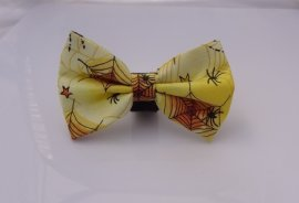 Spider Delight Bow