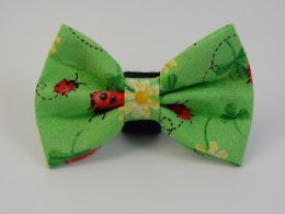 Lady Bug Bow