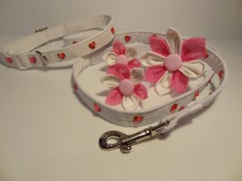 Love Heart Lined Collar, Lead Set